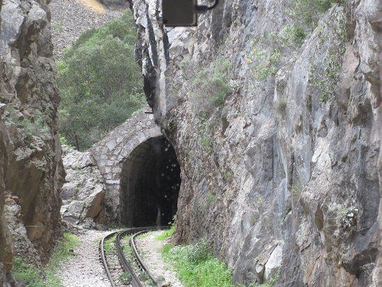 Odontotos Rack Railway Photo