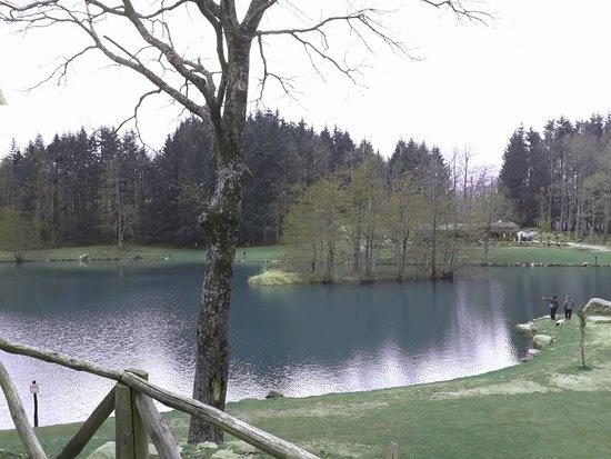Ristorante Lago dei Pontini