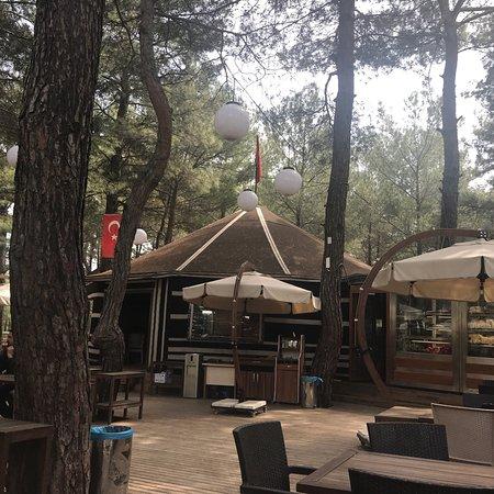 Kemalpasa, Turcja: Kemalpaşa Belediyesinin işlettiği piknik alanı çok güzel. Doğal orman içi değerlendirilmiş ve bü