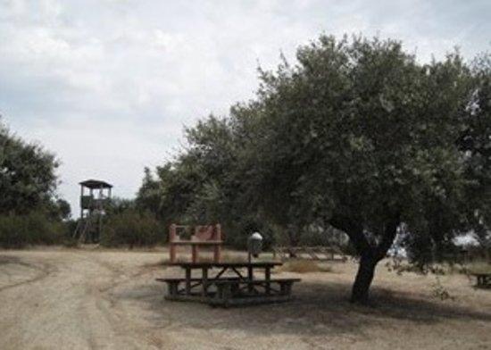 Mourao, Portugal:  Parque de Merendas em Mourão