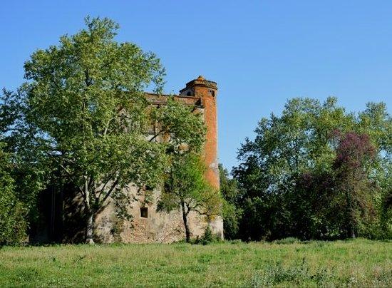 Montemor-o-Novo, Portugal: Quinta do Carvalhal (Escoural)