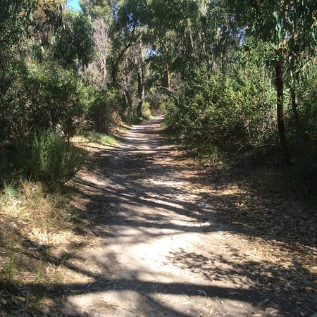North Beach, Australia: Bushland Reserve pictures