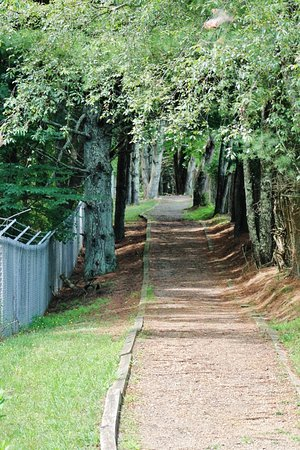 Hillsville, VA: Well-defined walking paths--some in shade, some not.