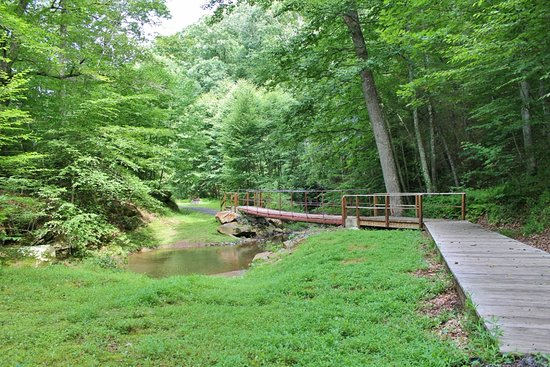 Hillsville, Βιρτζίνια: You'll want your camera with you when you walk this trail.  Beautiful scenery & wildlife.