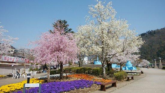 Sagami Lake Prefectural Park