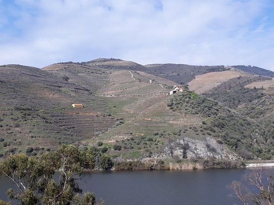 Folgosa, Portugal: 20180326_160321_large.jpg