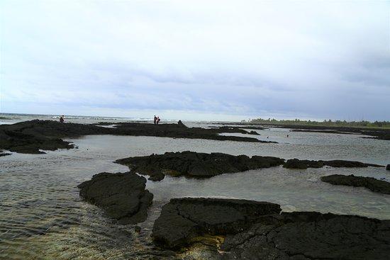 Pahoa, Havaí: Tide pools