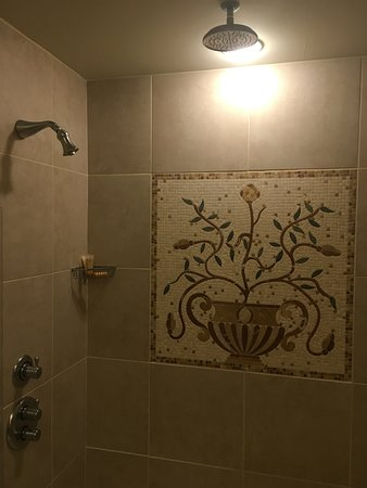 Riverside, MO : Shower was nice with a dual rain head and very spacious with a seat inside it