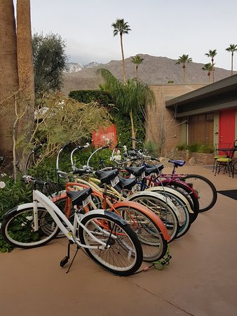 Desert Riviera Hotel: Free bicycle rentals