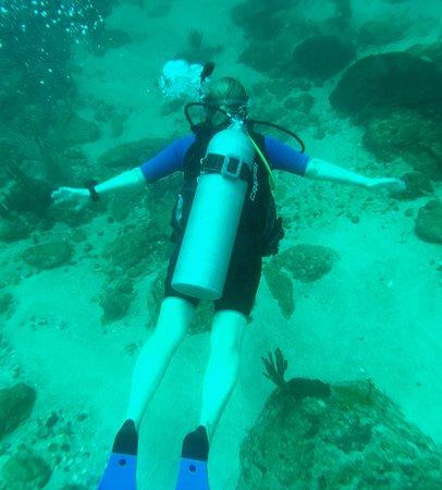 "Bon Accord, Tobago: My ""Angel Fish"""