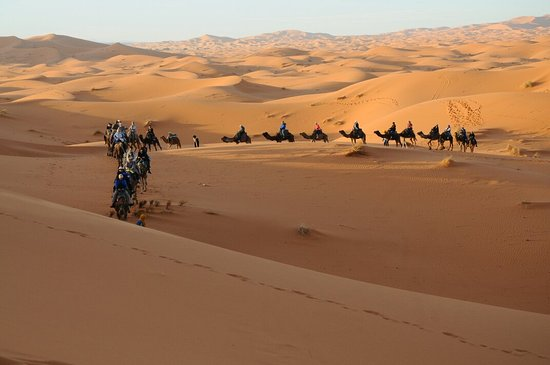 Magic Sahara Tours