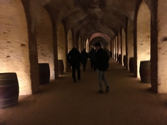 Wine Tasting Small Group Tour from Madrid: One of the caves