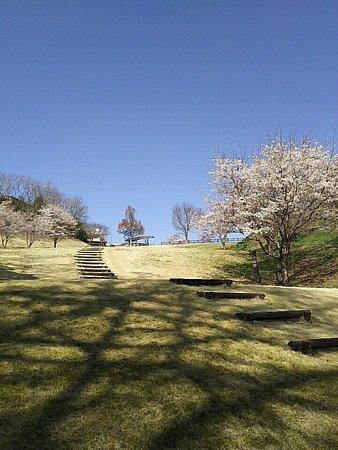 Shimizugawa Park