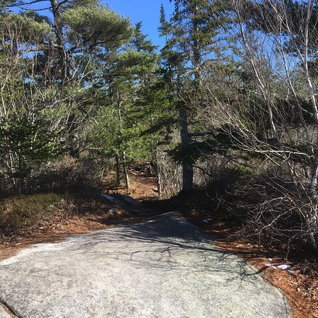 Bluff Wilderness Hiking Trails Halifax All You Need To