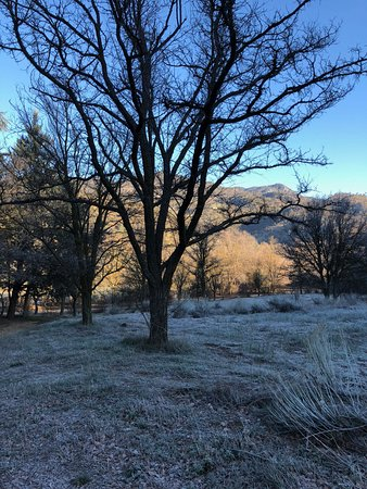 Caliente, كاليفورنيا: early morning spring frost - quickly gone with the sun