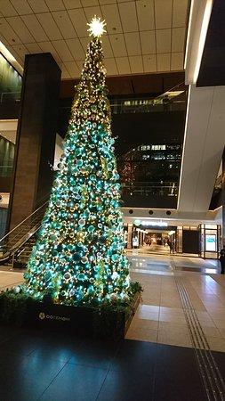 Ootemori: 12月のクリスマスツリー