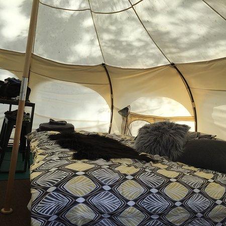 Clamping Tent - Fantastic