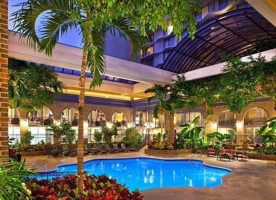 Sheraton atlanta hotel g orgie voir les tarifs 17 for Site pour les hotels