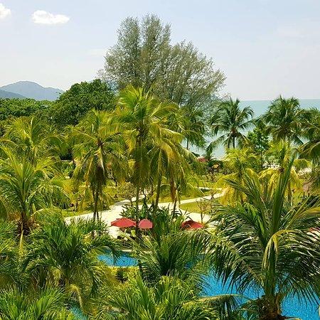 PARKROYAL Penang Resort, Malaysia: IMG_20180331_224401_295_large.jpg