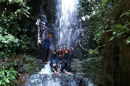 2D1N Tour Rainforest Taman Negara...