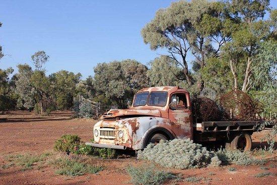 Morven, Australia: Gidgee's Bush Camp