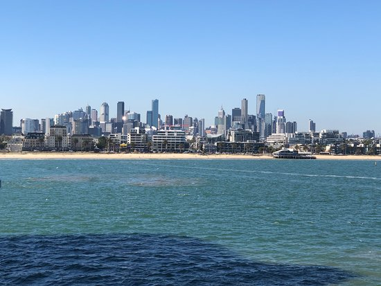 Half-Day or Full-Day Tour with Private Guide from Melbourne: Beautiful Melbourne skyline