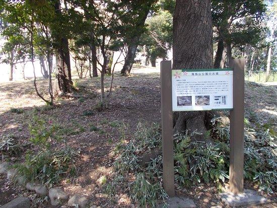 Asukayama Kofun