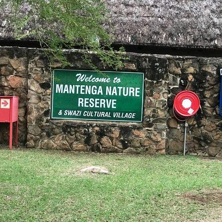 Mantenga Lodge: Super calmness Mantenga Nature Reserve