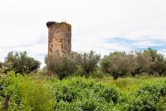 Portel, Portugal: Torre de Val-Boim (Vera Cruz de Marmelar)