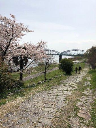 Kasamatsu Minato Park