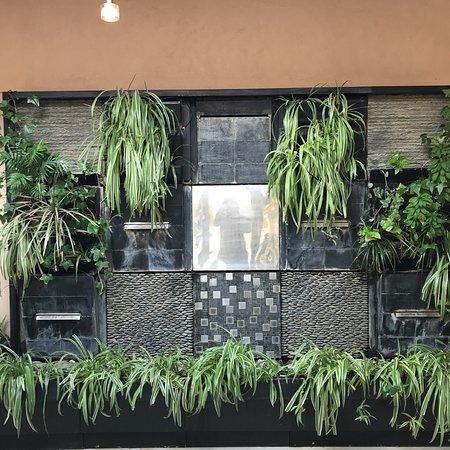 Le clos des vignes neuville bosc restaurant avis num ro de t l phone photos tripadvisor - Le clos des vignes neuville bosc ...