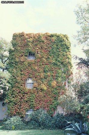 Castelo Velho de Degebe