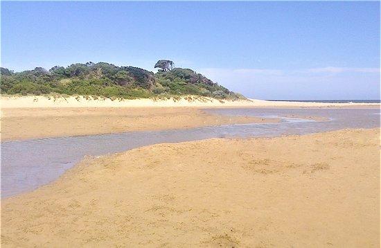 Angel Sea Garden : Where the river meets the sea, only a sandbar divides. [2017]