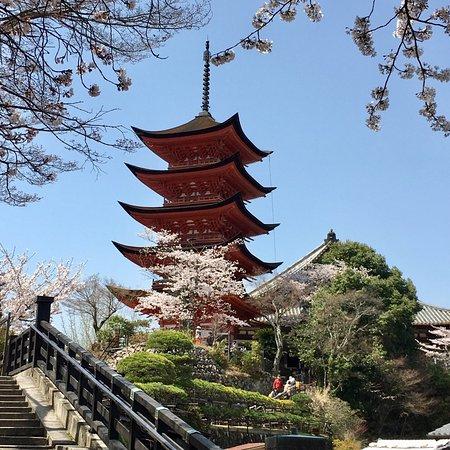Rihga Royal Hotel Kyoto Tripadvisor