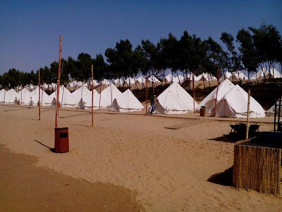 Хорошо виден масштаб проблемы с лагерем на пляже