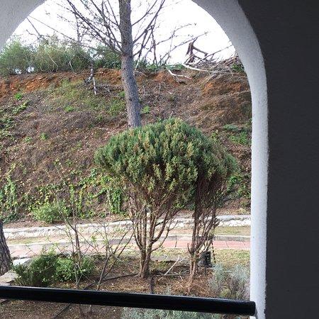 Benarraba, İspanya: photo0.jpg