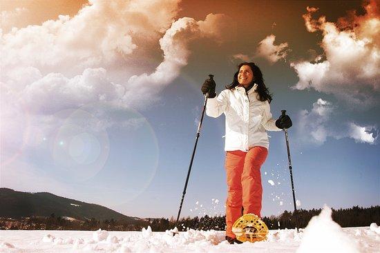 St. Stefan am Walde, Østrig: auch im Winter zahlreiche Möglichkeiten