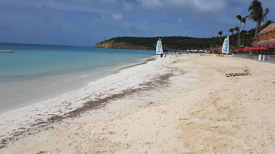Sandals Grande Antigua Resort & Spa: Seaweed and contrast between original white powder and new imported rough sand
