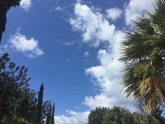 Cydive: небо над Пафосом