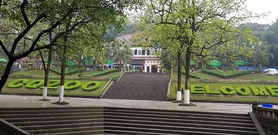 Chongqing Zoo (Chongqing Dongwuyuan) : 20180324_103116_large.jpg