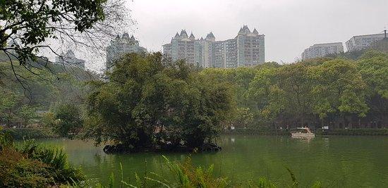 Chongqing Zoo (Chongqing Dongwuyuan) : 20180324_102854_large.jpg
