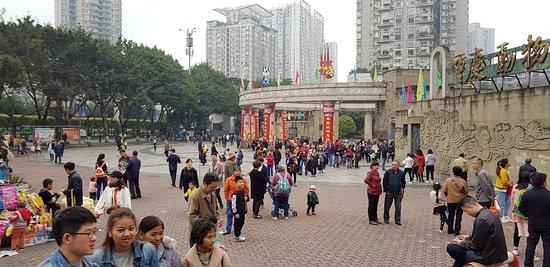 Chongqing Zoo (Chongqing Dongwuyuan) : 20180324_113827_large.jpg