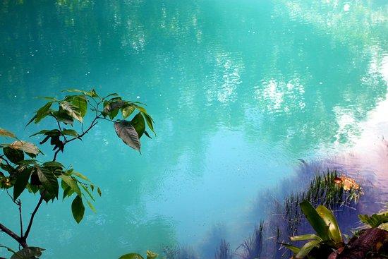 Tenorio Volcano National Park, Costa Rica: Azure water at Rio Celeste