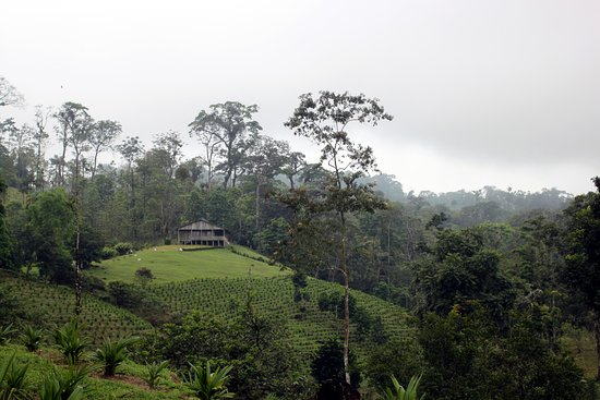 Tenorio Volcano National Park, Costa Rica: Scenery near Rio Celeste