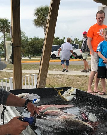 Ruskin, FL: Travis took care of us right to the fish prep! Tanks Buddy.—Nick, Montreal