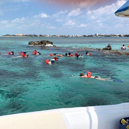MUSA Cancún (Museo Subacuático de Arte): photo1.jpg