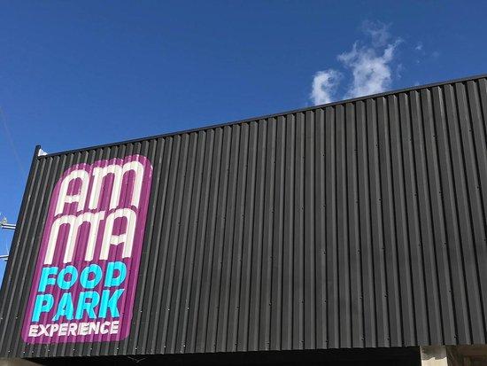 AMMA Food Park Experience
