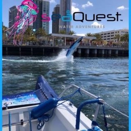 Seaquest Water Adventures San Diego 2018 All You Need To Know Before You Go With Photos