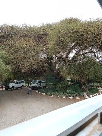 Sentrim Amboseli: 20170808_063637_large.jpg