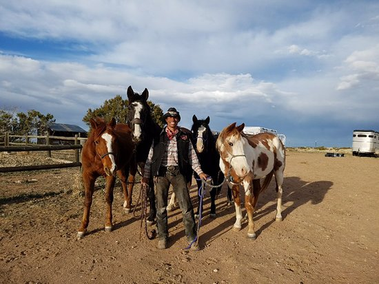 Vision Quest Western Horseback Rides & Lessons